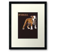 pitbull terrier Framed Print