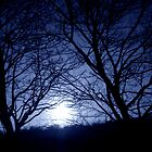 moonlight sunset at 60 by stephen denton