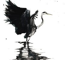 Heron Stretching Wings by Cat Graff