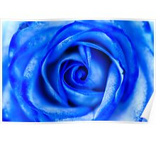 Abstract Macro Blue Rose Poster
