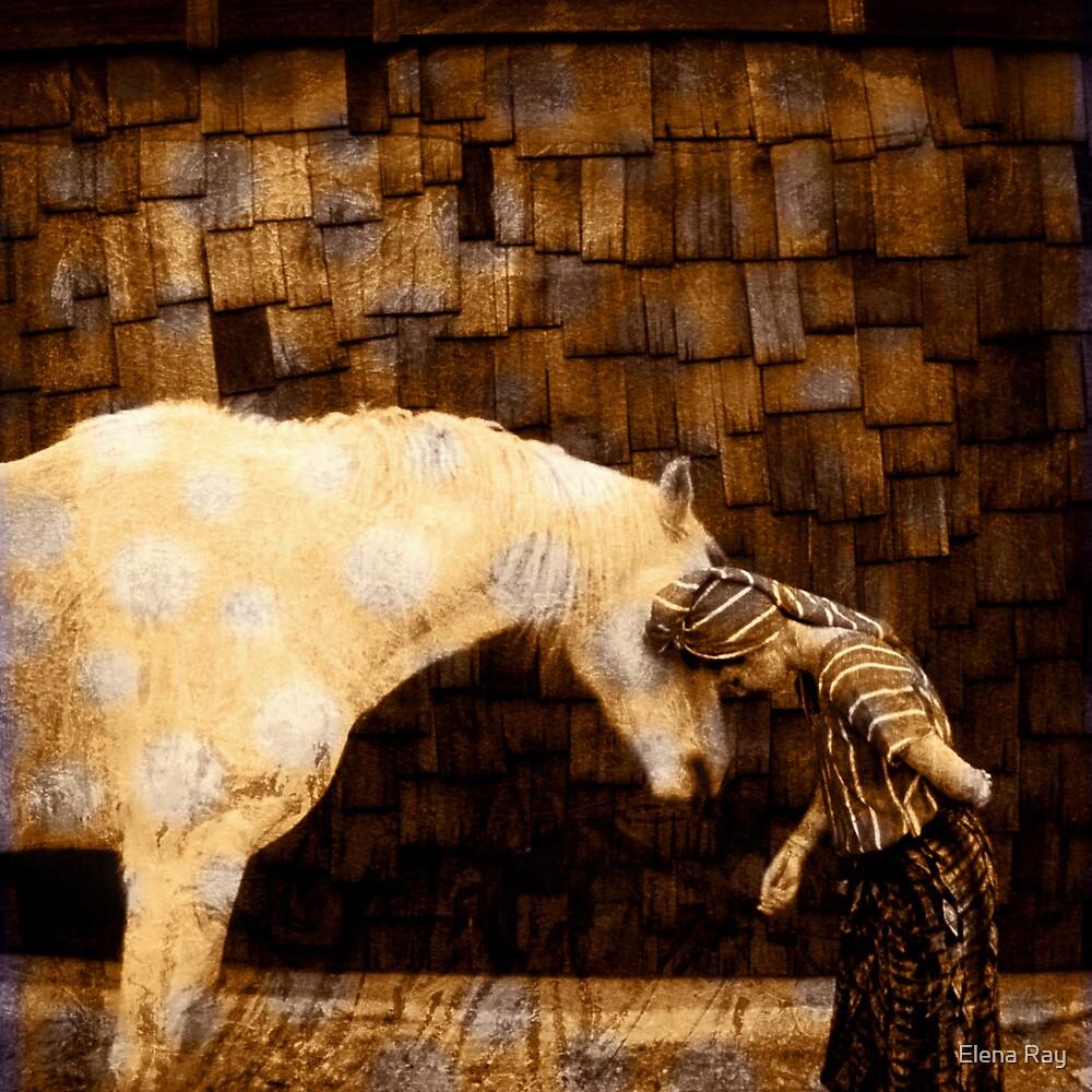 Horse Language by Elena Ray