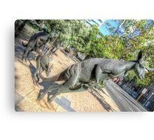 Kangaroos In The City 3 - Perth WA - HDR Canvas Print