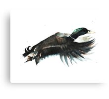 Duck Flying Canvas Print