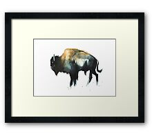 Dawn's Buffalo Framed Print