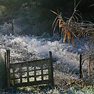 Frosted Garden by Fran0723