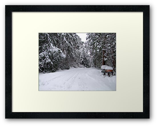 My Snowy Road by George Cousins