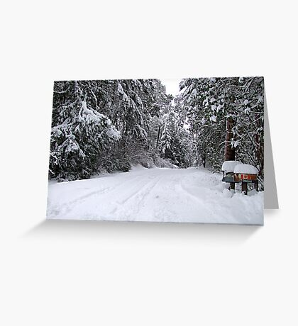My Snowy Road Greeting Card