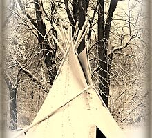 ~ Almost a Dances With Wolves Winter Camp ~ by Tim Denny