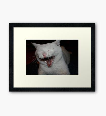 Hilarious  Framed Print