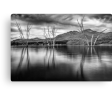 Where Once a River Flowed Metal Print