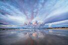 Sunset Blush by Mieke Boynton