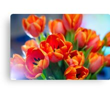 Bouquet of red tulips Canvas Print