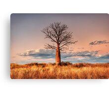 A Pastel Sunset Canvas Print