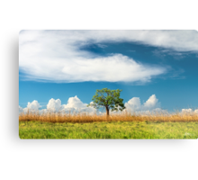 The Tree at the End of the Road Metal Print