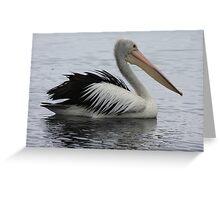 Pelican boating Greeting Card