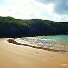 Beach by Donna Chapman