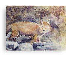 THE FOX(C1992) Canvas Print