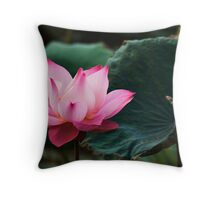 Sole Beauty Throw Pillow