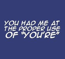 "You had me at the proper use of ""You're"" by digerati"