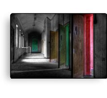 All the colours of madness... Canvas Print