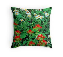 INDIAN PAINTBRUSH AND ASTERS Throw Pillow