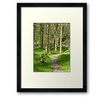 Sailean Nan Cuileag Framed Print