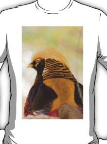 31115 Chinese Golden Pheasant T-Shirt