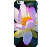 Pink Lotus Flower iPhone Case/Skin