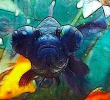 goggle eye fish by SarahTrangmar