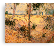 'Trees in a Field on a Sunny Day' by Vincent Van Gogh (Reproduction) Canvas Print
