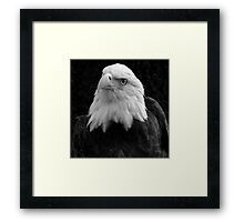 His Majesty ~ Part One Framed Print