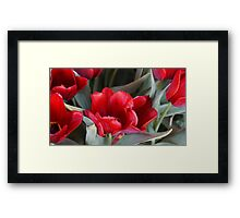 LUSCIOUS SOFT RED TULIPS Framed Print