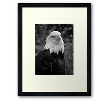 His Majesty ~ Part Three Framed Print