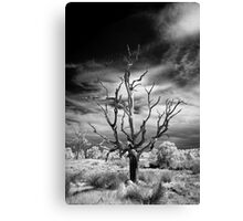 Dead Tree Infrared Canvas Print