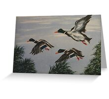 We'll Fly Away. Greeting Card