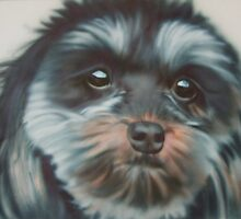 friends dog Rubi by milsey