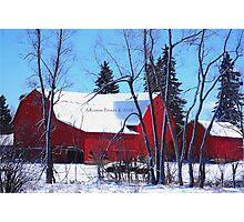 Last Snowfall Photographic Print