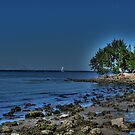 Port Charlotte, FL by LudaNayvelt