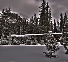 Cabin in the Snow by Jeanne Frasse