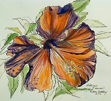 Red hibiscus Hawaii: pen and wash. by Elizabeth Moore Golding