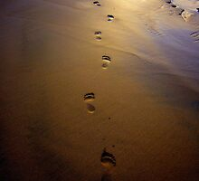 Strolling by Madeleine Forsberg