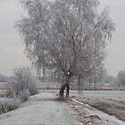 "Winter in "" The Weerribben"". by Minne"