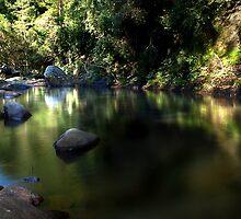 Light Games - Kangaroo Valley, NSW by Malcolm Katon