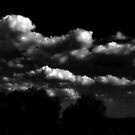 Big sky by Colleen Milburn