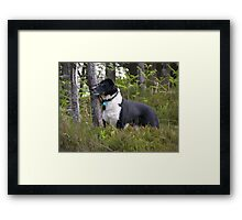 The Leaning Post Framed Print