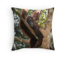 Chilled Ape Throw Pillow