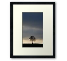 Lonely at Sunset Framed Print