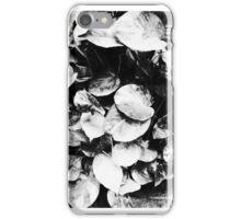 entity iPhone Case/Skin
