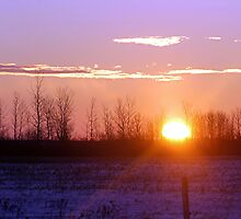 Winter Sunrise by Stephen Thomas