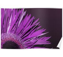 frilly flower Poster